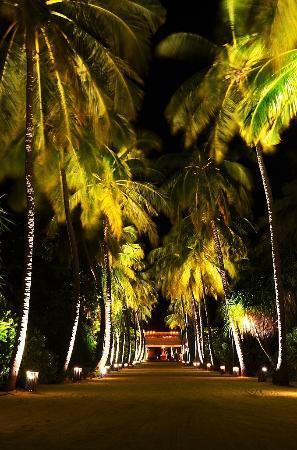 Four Seasons Resort Maldives at Landaa Giraavaru: Night view