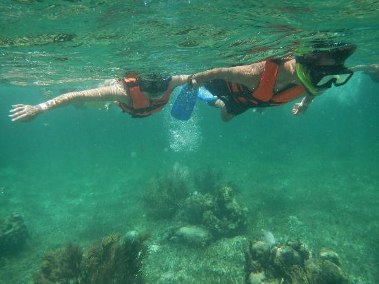 Grand Fiesta Americana Coral Beach Cancun: Snorkeling