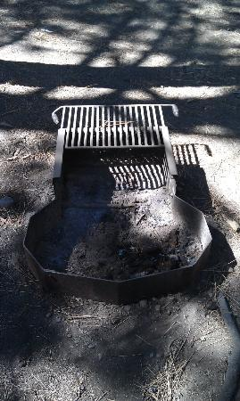 Mammoth Mountain RV Park : fire pit