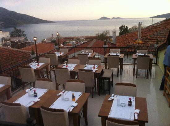 Escudo terrace restaurant: escudo