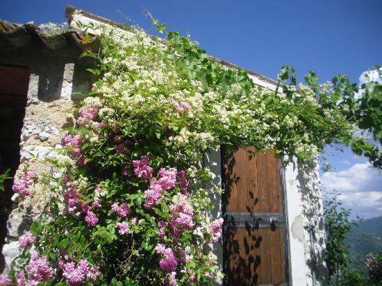 Agriturismo Borgo di Fonni : proprio di fronte alla nostra porta!