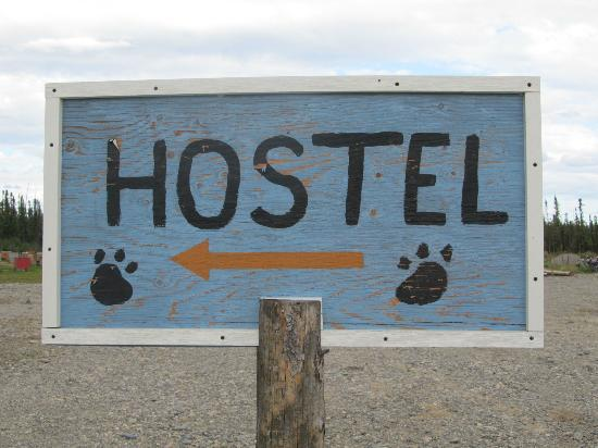 3 Dog Night Hostel: Hostel
