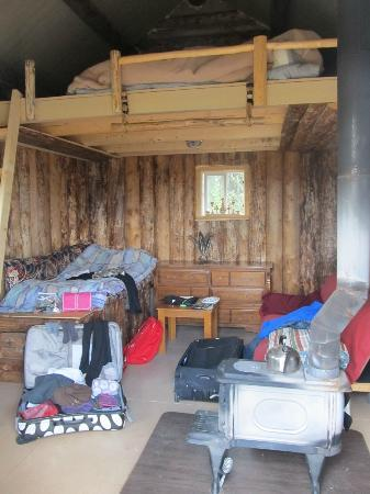 3 Dog Night Hostel: The inside of the dry cabin