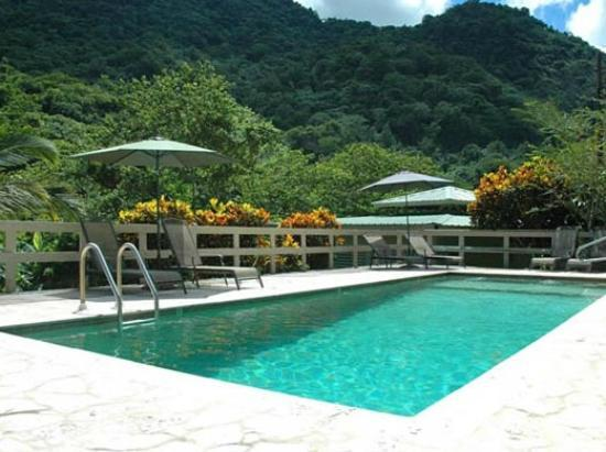 Casa Grande Mountain Retreat: Pool view