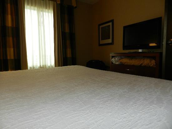 Hilton Garden Inn Dayton Beavercreek: bedroom
