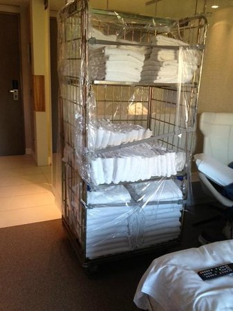 Pullman Eindhoven Cocagne: Entire towel trolley park in our room!