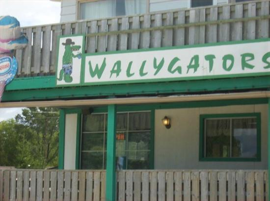 The front of Wallygators