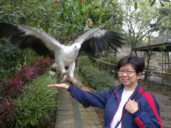 Philippine Eagle Centre照片