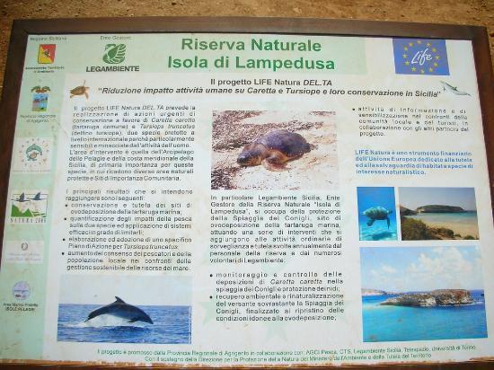 Isola dei Conigli: Natural reserve