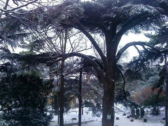Timhotel Jardin des Plantes: En hiver...