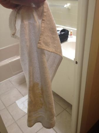 Econo Lodge: dark yellow towels almost as big as dish towel