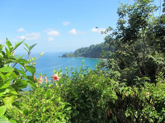 View of the Pacific from Casa Corcovado Jungle Lodge