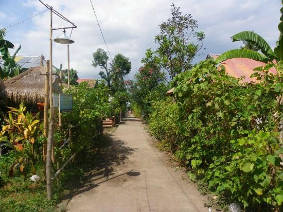 Indonesia: STREET OF GILI AIR