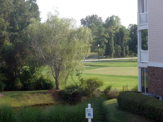 Barefoot Resort: View of Golf Course from front of building!