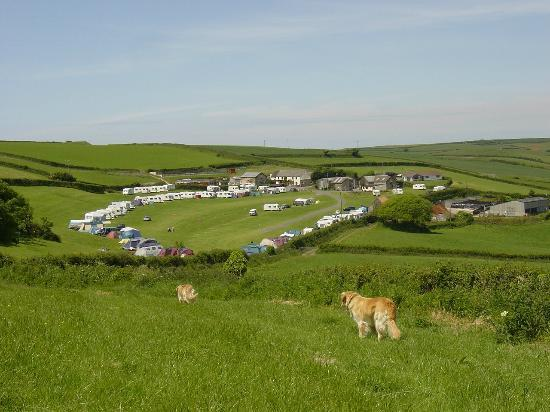 Higher Rew Caravan and Camping Park: View from end of park