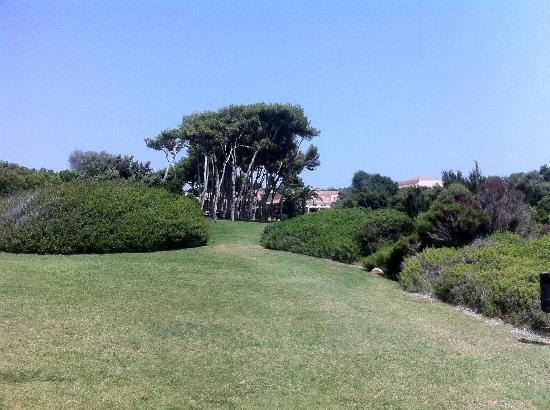 Hotel Cala Caterina : Il parco che collega l'hotel alla spiaggia