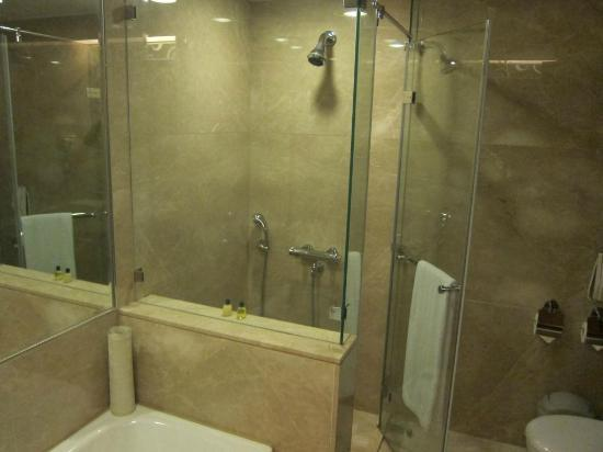 Monarch Skyline Hotel: Big bathroom but a bit skimpy on amenities