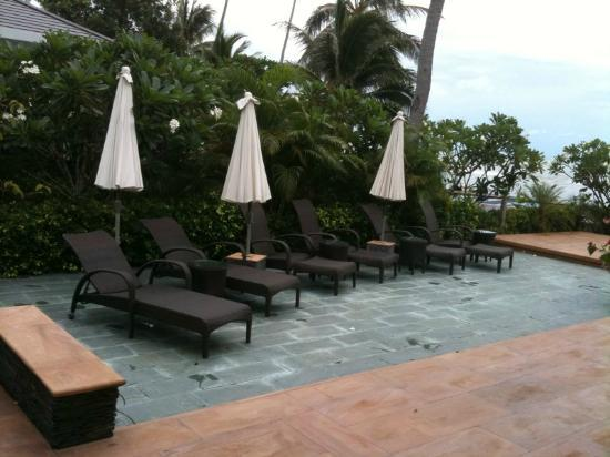 Lotus Samui : Deck Pool