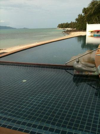 The Lotus Terraces: Infinity pool view