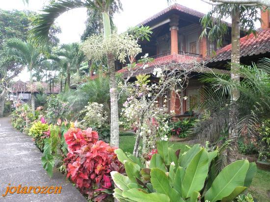 Cendana Resort and Spa: Landscape walkways leading to chalet rooms