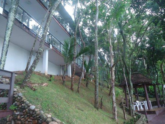 Bombinhas Palace Hotel:                   Paseo