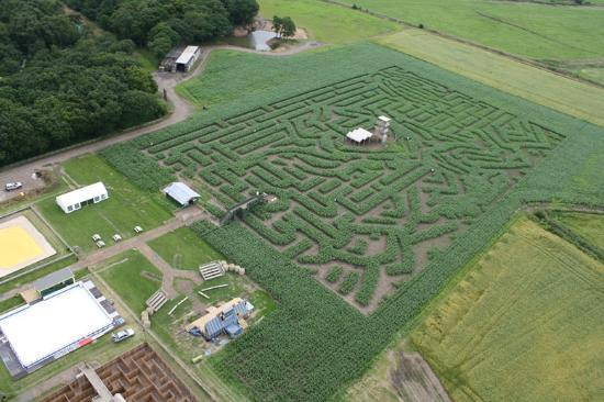 Warrington, UK: The Massive Maize Maze