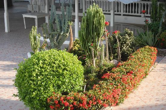 Piergiorgio Palace Hotel: il giardino