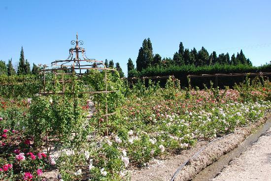Saint-Remy-de-Provence, France: la gloriette