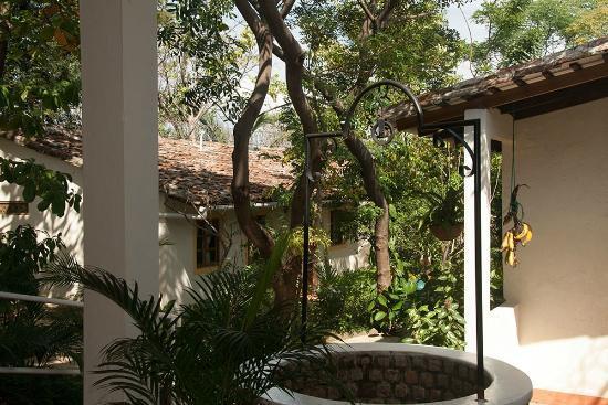 Hotel Casa Barcelona: Garden