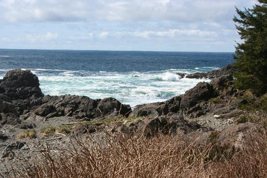 Fortune Cove: Amphitrite Point, Ucluelet