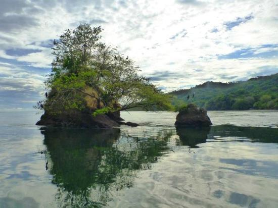 Bahia Rica Fishing and Kayak Lodge: Stunning view in the rainy season