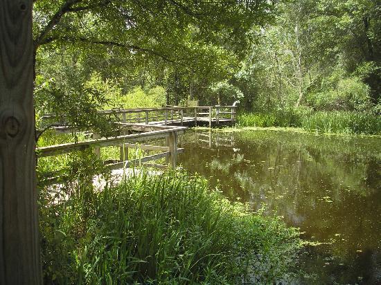 Nature Center Around Houston