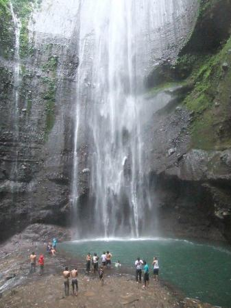 Madakaripura Waterfall : part of the biggest waterfall