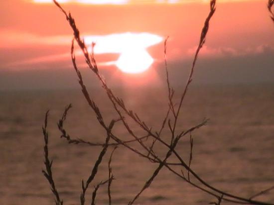 Lake Breeze Inn: beauty abounds