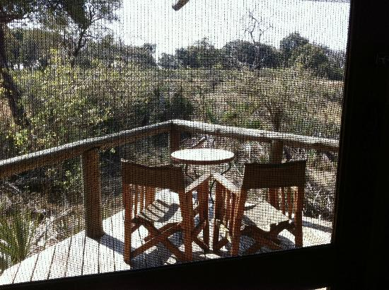 Wilderness Safaris Xigera Camp: mosqito net on the door