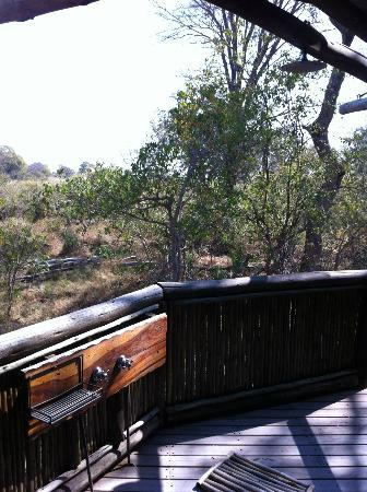 Wilderness Safaris Xigera Camp: outdoor shower