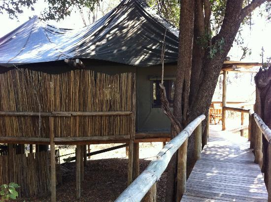 Wilderness Safaris Xigera Camp: view on the tent from broad walk