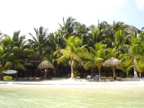 Beachfront Hotel La Palapa: VISTA DAL MARE