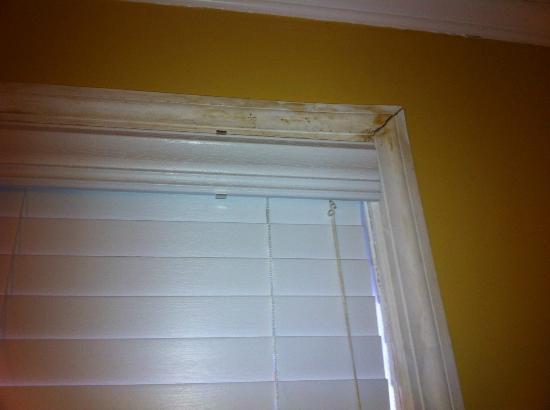 Surrey Beach House: Severely water damaged/moldy window trim