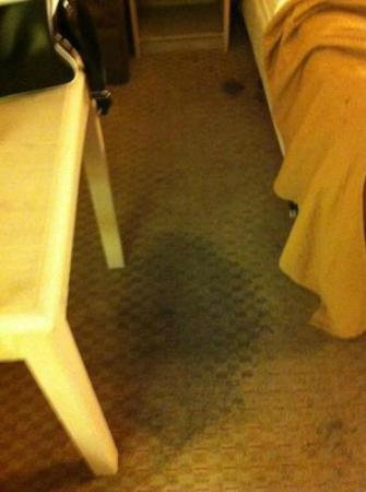 Quality Inn: Room 331 - Black stains on the carpet by the bed
