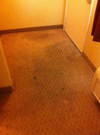 Quality Inn: Room 331 - Black stains by the front door (not typical foot traffic stains)