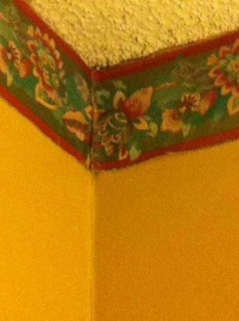 Quality Inn: Room 331 - Wallpaper peeling due to mold growth