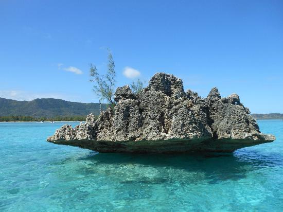 Gold Beach Resort: L'île aux bénitiers