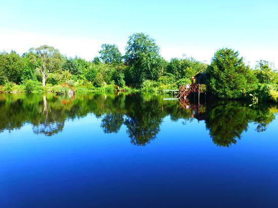 Glenwhan Gardens: glenwhan4