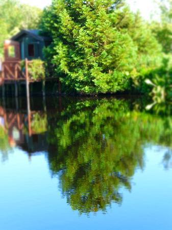Glenwhan Gardens: glenwhan2