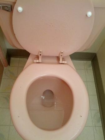 Quality Inn Uptown: Rusted toilet seat
