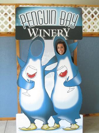 Seneca Lake Wine Trail : Penguin Bay Winery