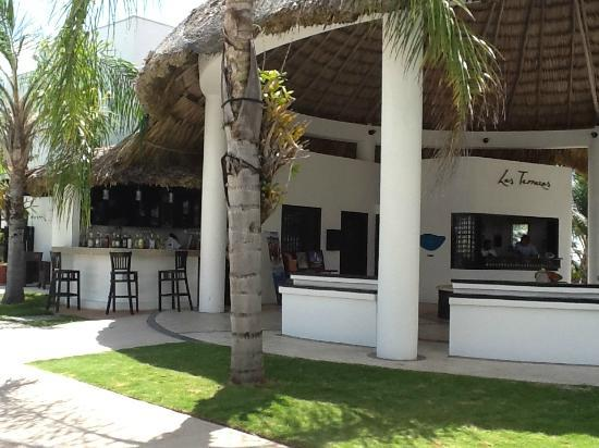 Las Terrazas Resort: Welcome desk and poolside bar