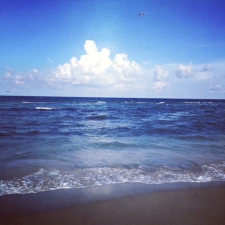 Stuart, FL: Paradise