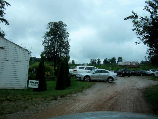 Three Sisters Vineyards & Winery: Parking
